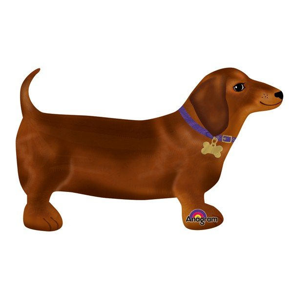 Anagram Airwalkers - Darling Dachshund