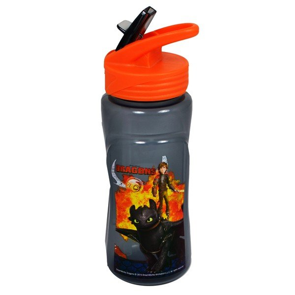 Dragons Europa Plastic Water Bottle