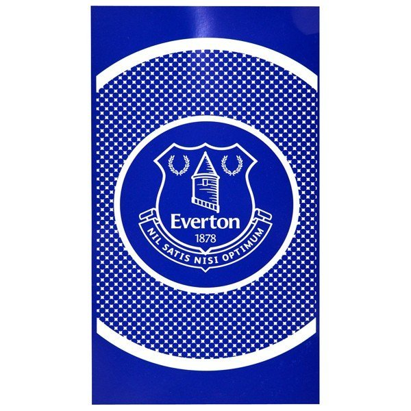Everton Bullseye Beach Towel