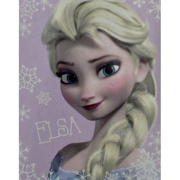 Frozen Panel Fleece Blanket