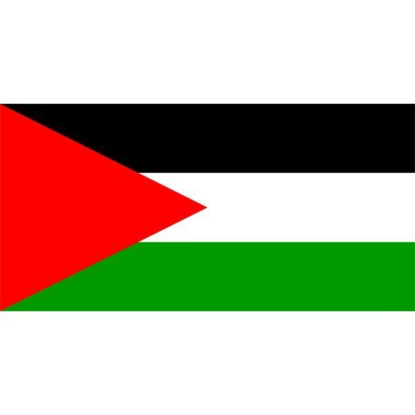 Palestine National Flag