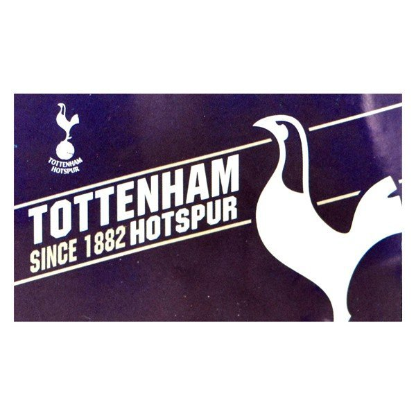 Tottenham Established Flag