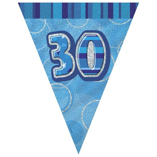 Unique Party Blue Pennant Bunting - 30