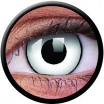1 Day Use White Zombie Coloured Contact Lenses