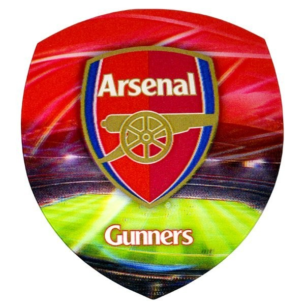 Arsenal Universal 3D Skin - Large
