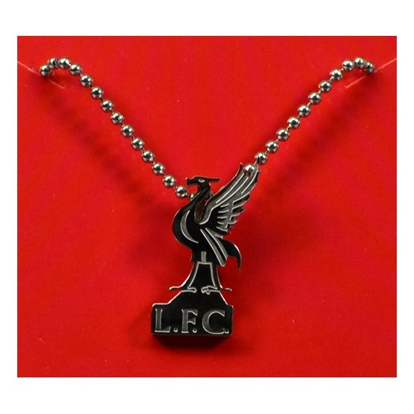 Liverpool Stainless Steel Liverbird Pendant/Chain
