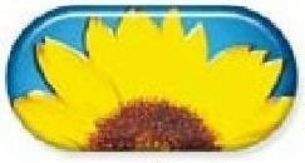 Sun Flower Summer Vibes Contact Lens Soaking Case