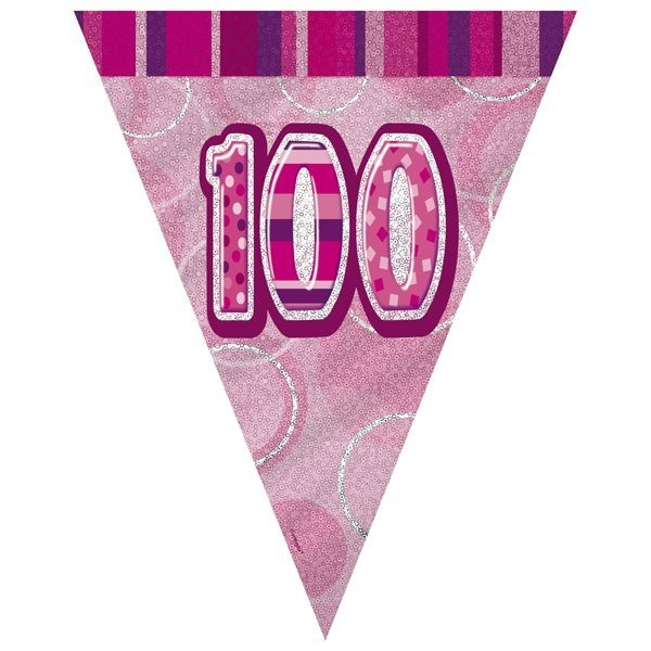 Unique Party Pink Pennant Bunting - 100