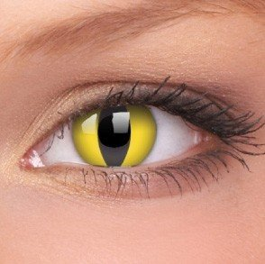Cat Eye Crazy Colour Contact Lenses (1 Year Wear)