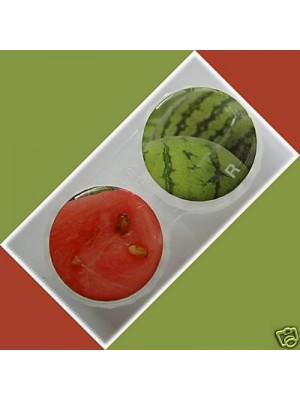 Watermelon Summer Fruits Contact Lens Holder For Lenses