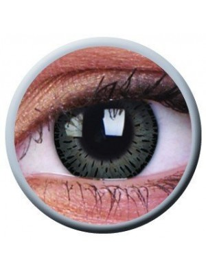 Elegance Grey Coloured Contact Lenses