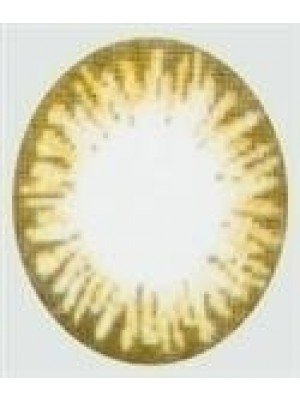 Golden Brown Coloured Contact Lenses (90 Day)