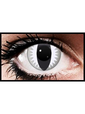 Piercing Grey Cat Crazy Coloured Contact Lenses (90 days)