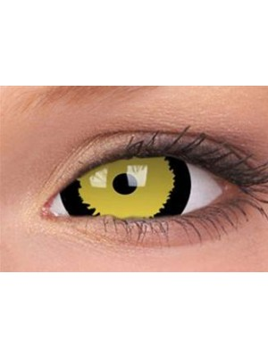 Tigera Mini Sclera Coloured Contact Lenses (1 Year)