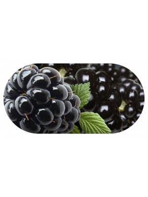 Funky Blackberry Contact Lens soaking Case With Mirror