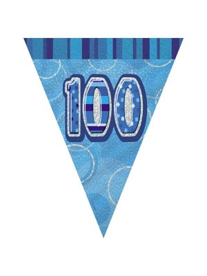 Unique Party Blue Pennant Bunting - 100