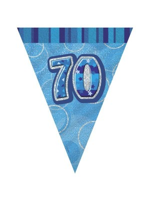 Unique Party Blue Pennant Bunting - 70